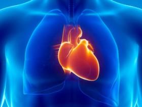 功能强大的数字模型复制了心脏性猝死之前的生物学活动