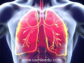 新的研究项目,以确定为什么矿尘引起的肺部疾病正在上升
