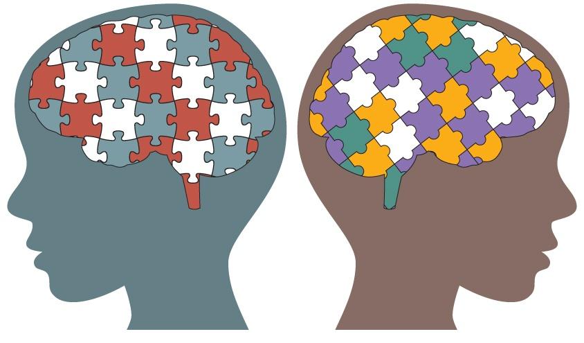 中间神经运动障碍可能导致皮质畸形